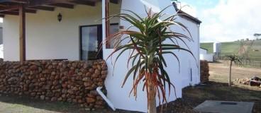The Aloe Cottage 1