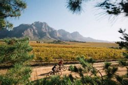Fedhealth MTB Challenge at Boschendal photo credit Hayden Brown Photography